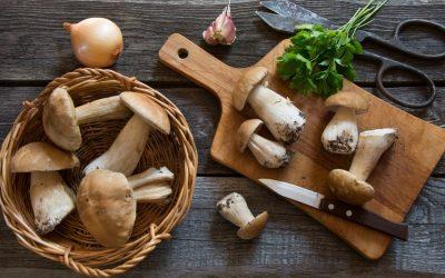 El otoño inaugura la temporada de las deliciosas croquetas de boletus